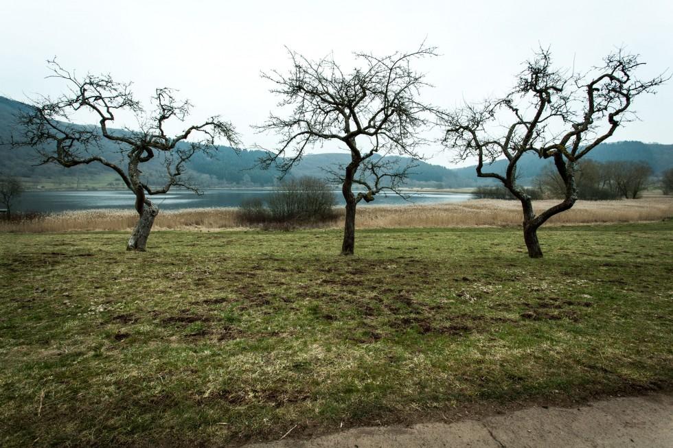 Eifel_blog-5905